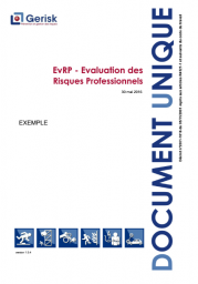 Document unique Exemple